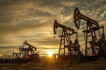 Optimismus ohledně návratu poptávky přidává ropě přes čtyři procenta